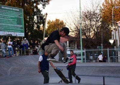 Skate (8)