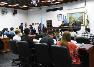 parlamento joven (3)