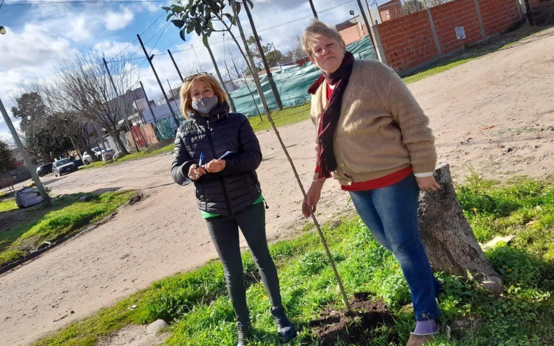 ENTREGA GRATUITA DE ÁRBOLES EN MERLO NORTE